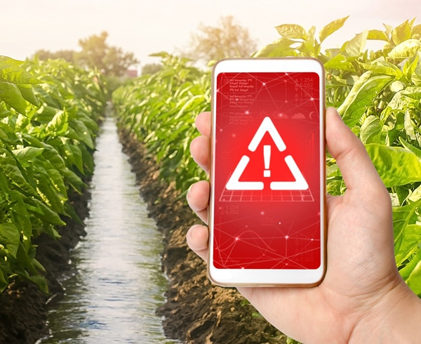 image of phone in hand with warning